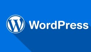 Wordpress course Rohini