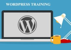 WordPress Master Course: WordPress Coaching in Rohini Sector 22 Delhi