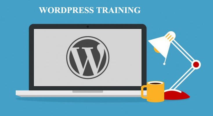 Wordpress Course in Rohini